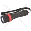 1W Adjustable LED torch